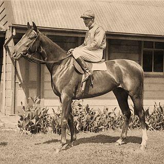 Hall Mark (horse) Australian Thoroughbred racehorse