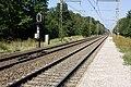 Halte Fontainebleau - Forêt IMG 8530.jpg