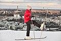 Hammarbybacken February 2012.jpg