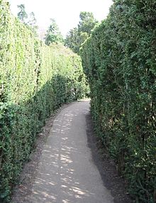 notable public hedge mazesedit