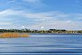 Harku järv 2012.jpg