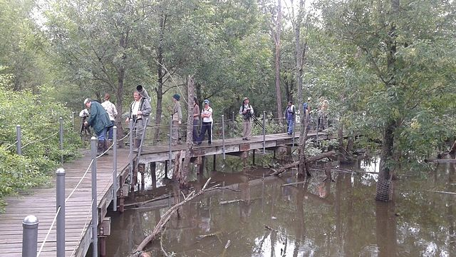 Image result for mckinney heard museum nature trails