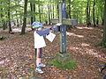 Hemmerichgipfelkreuz.jpg