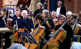 String orchestra musical ensemble