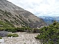 High Uintas, Utah - 2015.07.11 12.34.20 DSCN2672 - Flickr - andrey zharkikh.jpg