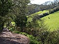 Higher Ramshill Lane - geograph.org.uk - 757580.jpg
