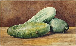 John William Hill - Cucumbers, c. 1860, Princeton University Art Museum