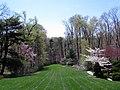 Hillwood Gardens in April (17571334496).jpg