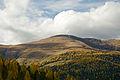 Hochrindl Herbstwald mit Speikkofel und Bretthoehe 21102013 231.jpg