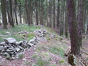 Der Wall im Nordwestbereich