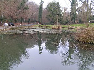 Southborough, Kent - Image: Holden Pond, South of Southborough Common geograph.org.uk 121905