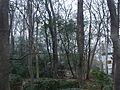 Hong Lou Park - Blank stele bixi, seen behind the trees - P1060598.JPG
