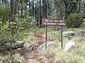 Horton Creek Trail, Payson, Arizona - panoramio (1).jpg