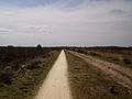 Houtbeekweg Kootwijksche Veld.jpg