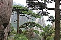 Huangshan Mountain - panoramio.jpg