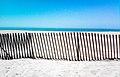 Huntington Beach fence.jpg