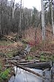 Huron Natural Area - Kitchener, Ontario 01.jpg