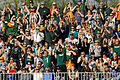Hurricanes Fans cheer their team on in 2014 credit-Stuhr.JPG