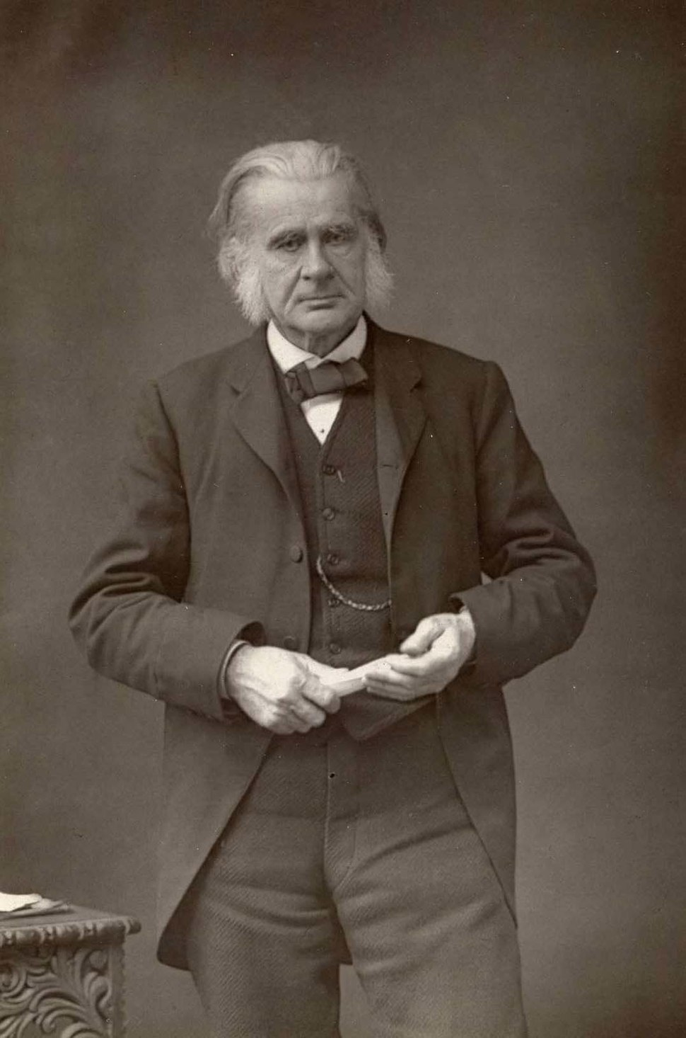 Huxley, Thomas Henry (1825 - 1895) by Daniel Downey (1829-1881) - 1863-9