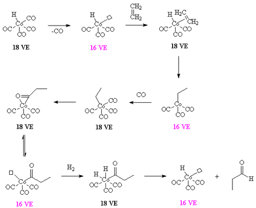 Hydroformylation of ethylene using a cobalt carbonyl