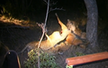 Hyenas Dominate a Leopard With a Kill Latest Wildlife Sightings HD 2.png