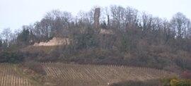 IMG Ruines du Chateau de Montaigu.JPG