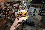 ISS-42 Terry Virts shows off his 'space cheeseburger'.jpg