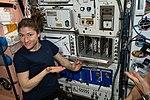 ISS-59 Pizza Night inside the Unity module (2).jpg