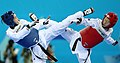 Incheon AsianGames Taekwondo 027 (15408670482).jpg