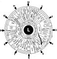 Iridology iris eye chart left mirror.jpg