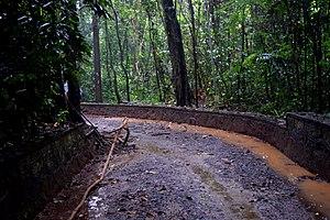 Iringole Kavu - Image: Iringol Kavu Perumbavur Kerala India DSC 5392