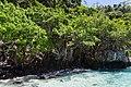 Isla Phi Phi Lay, Tailandia, 2013-08-19, DD 20.JPG