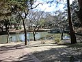 Izumo-taisha shrine, Izumo City; March 2014 (06).jpg