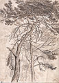 James Ward - Study of Trees - Google Art Project.jpg