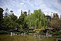 Japanese Friendship Garden (6897995618).jpg