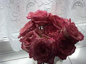 Jar of Roses, DSC09926.JPG