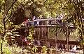 Jardim botanico poa4.jpg