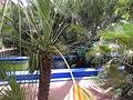 Jardin Majorelle 028.JPG