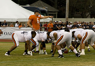 Jay Cutler - Cutler points out the mike linebacker during training camp, 2009