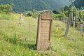 Jewish Cemetery Kolochava 2012 05.jpg