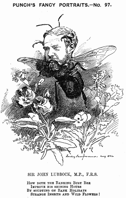 Caricature from Punch, 1882