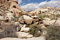Joshua Tree National Park (3433809640).jpg