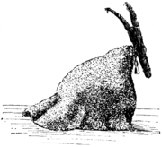 Finský Joulupukki