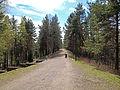 Jyväskylä - Harju top.jpg