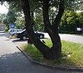 Kędzierzyn - Koźle - parking sklepowy Leclerc - panoramio.jpg