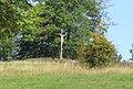 Kříž na Křížovém vrchu u Rynartic (Q94436103).jpg