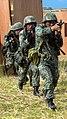 KAMANDAG 2017 Bilateral Training - Image 2 of 9.jpg