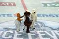 KHL Medvescak Zagreb EV Vienna Capitals Arena 23012011 5229.jpg
