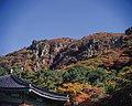 KOCIS Jeju Island (5982720813).jpg