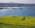 KOCIS Jeju Island (5983283822).jpg
